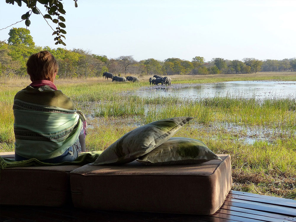 A woman sitting facing a waterhole watching elephants in the reeds.