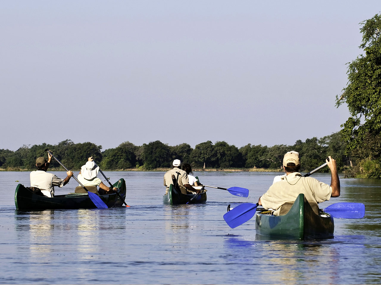 Three canoes with people rowing on a lake.
