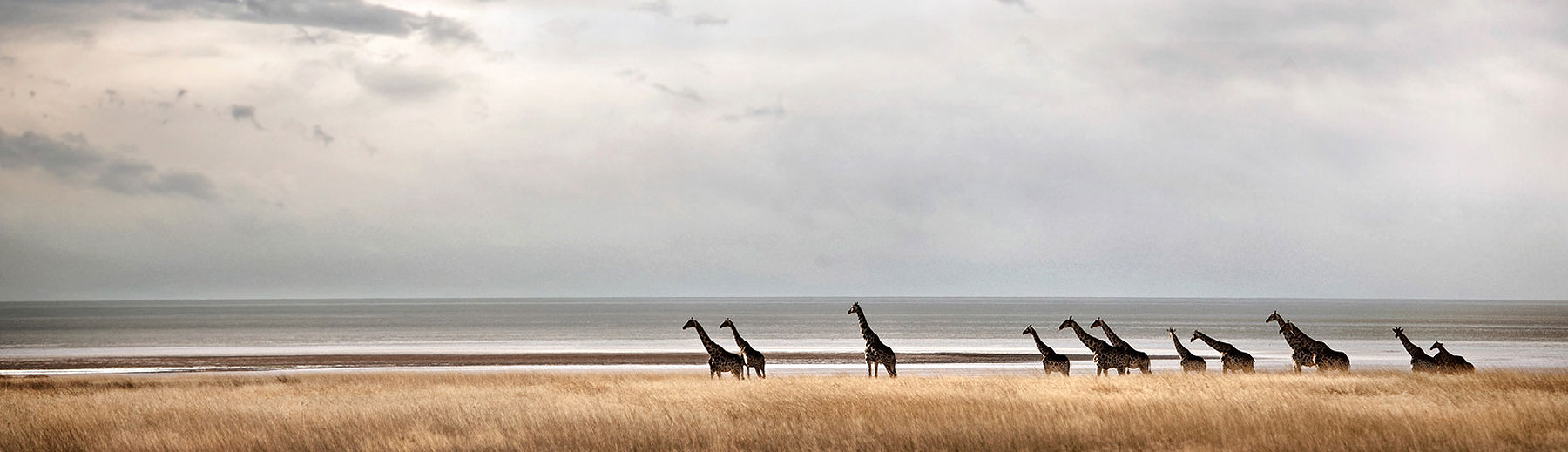 10 Best Places to Visit in Namibia