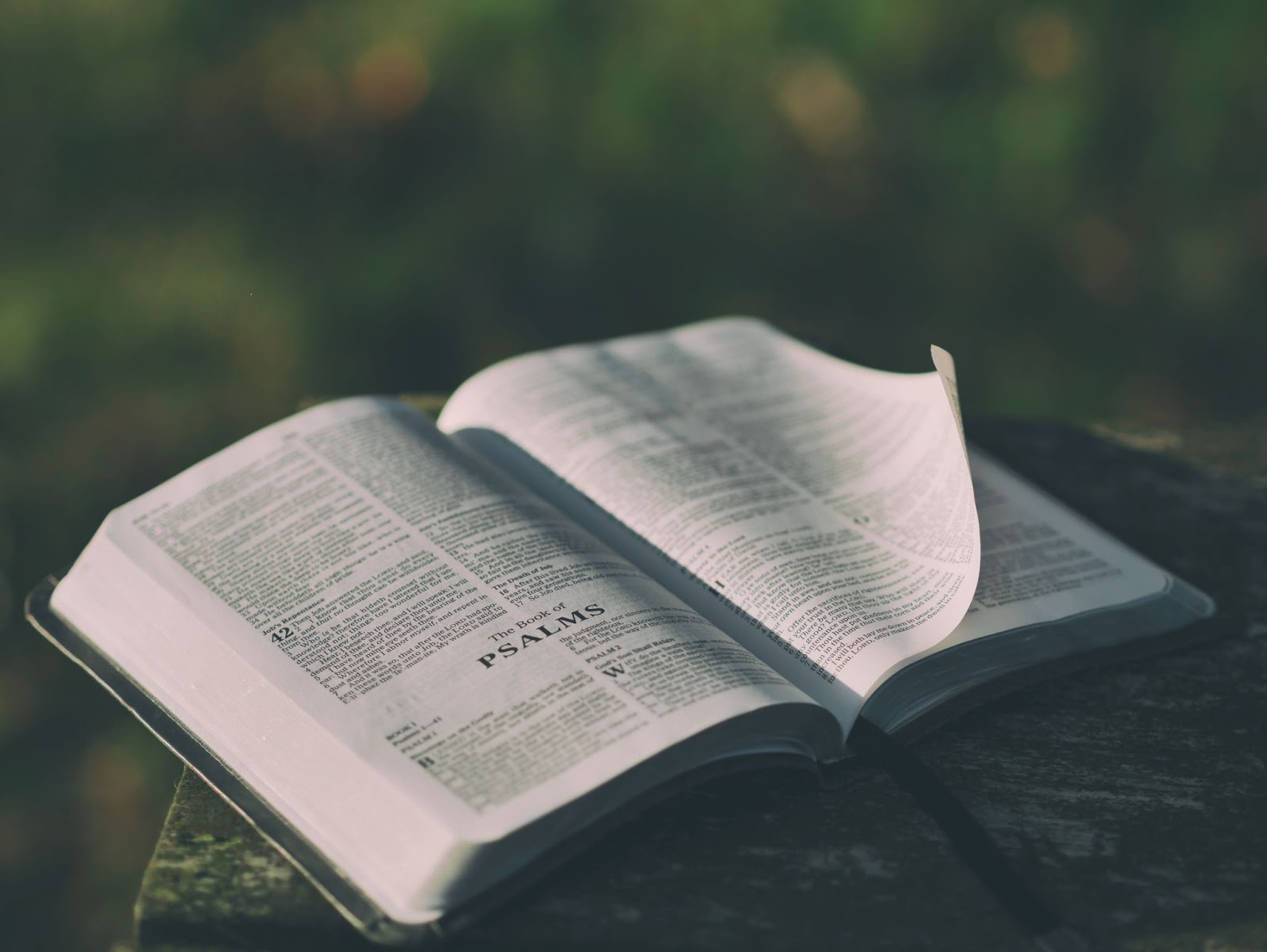 Bible opened to the Book of Psalms