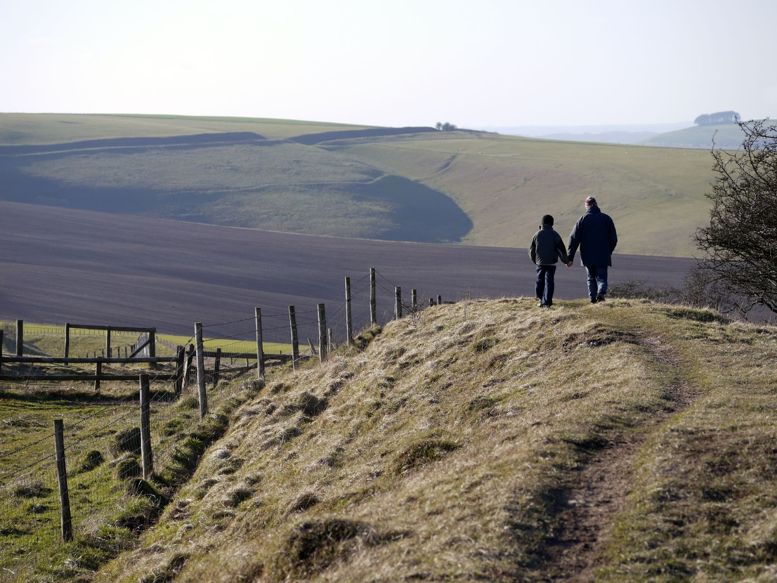 father and son walks hand-in-hand through a field