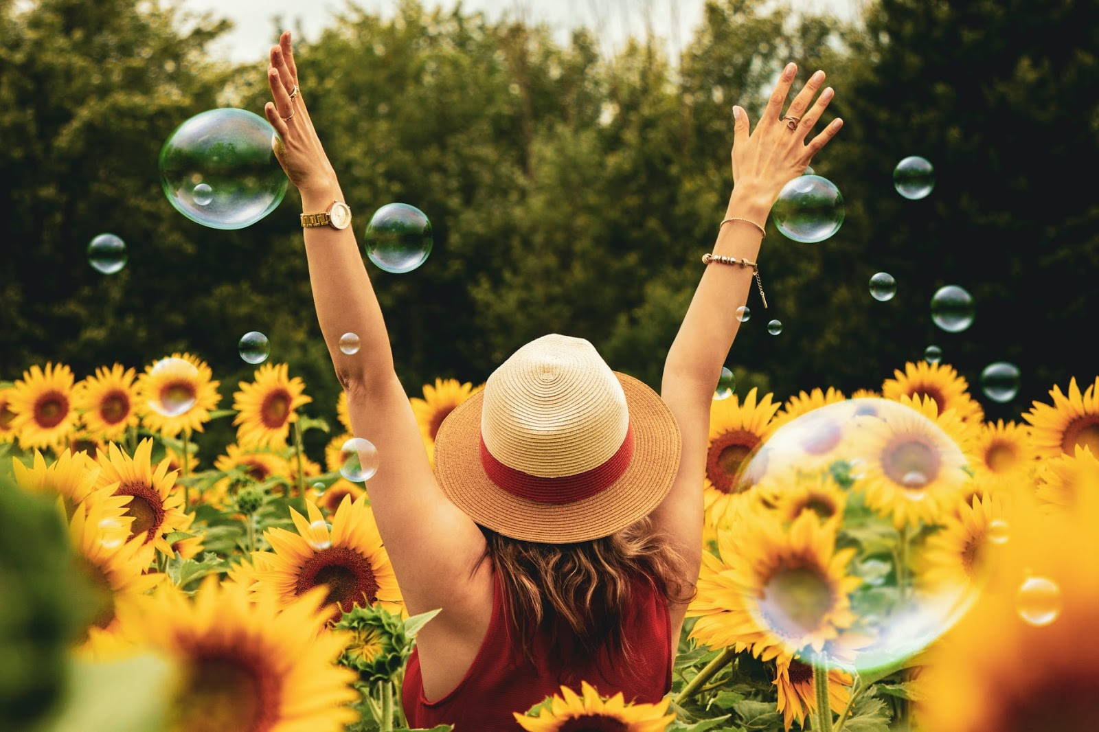 Woman standing in a field on sunflowers with hands in the air.