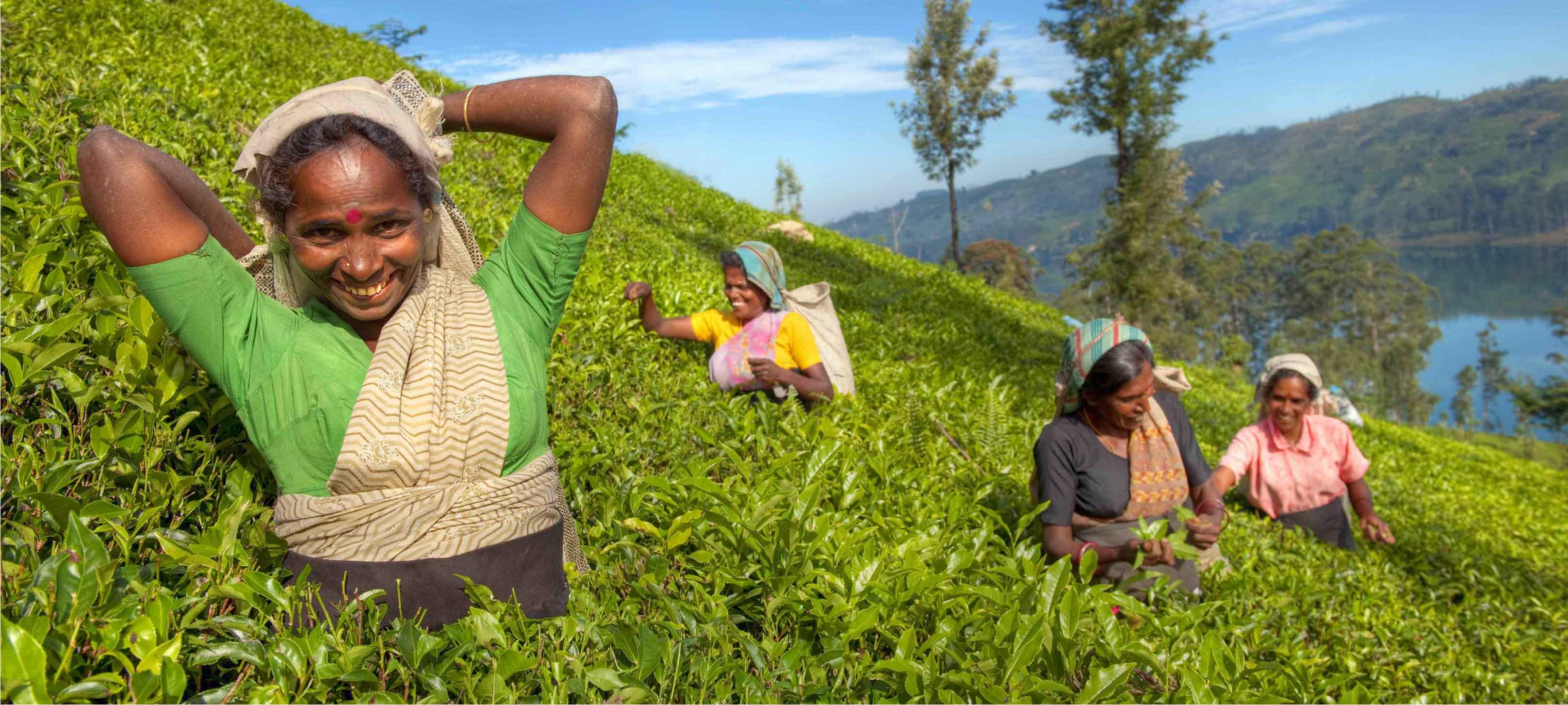 Australian Fintech AgUnity Wins Investment of €150,000 to Empower Smallholder Farmers
