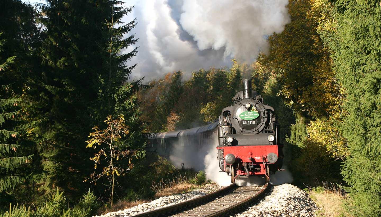 Eine historische Dampflok fährt durch den Wald.