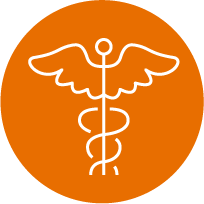 orange healthcare system icon Complete your US elective and core rotations and experience a new culture.