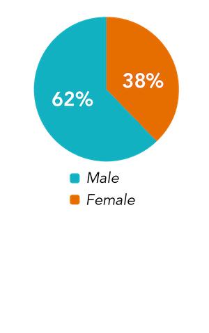 leadership gender pie chart