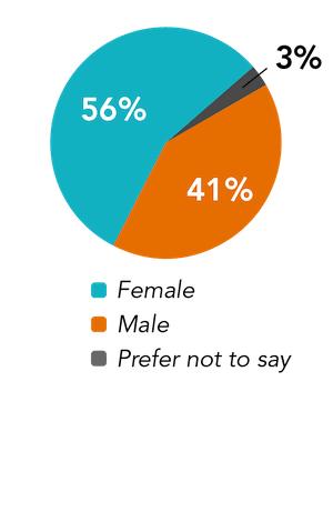 team gender pie chart
