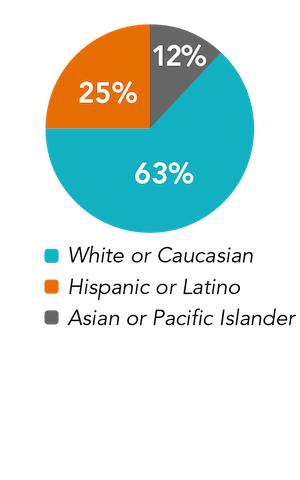 leadership ethnicity pie chart