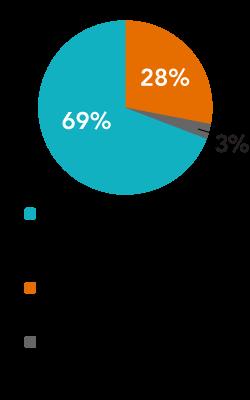 Team Representation of underrepresented groups pie chart