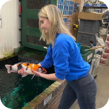 This Picture represents Emily from Koi Water Gardens Ltd