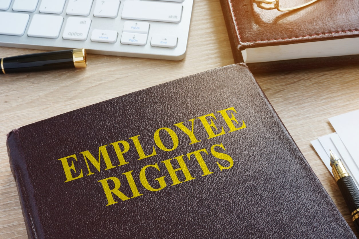 What are my main employment rights as an employee, worker or freelancer?. Image of a book of employment rights | Crunch