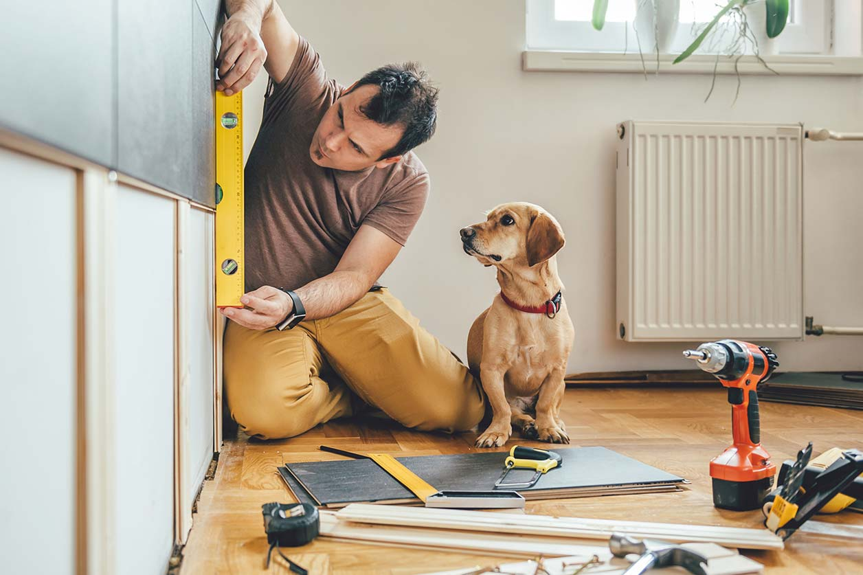 Man and dog business