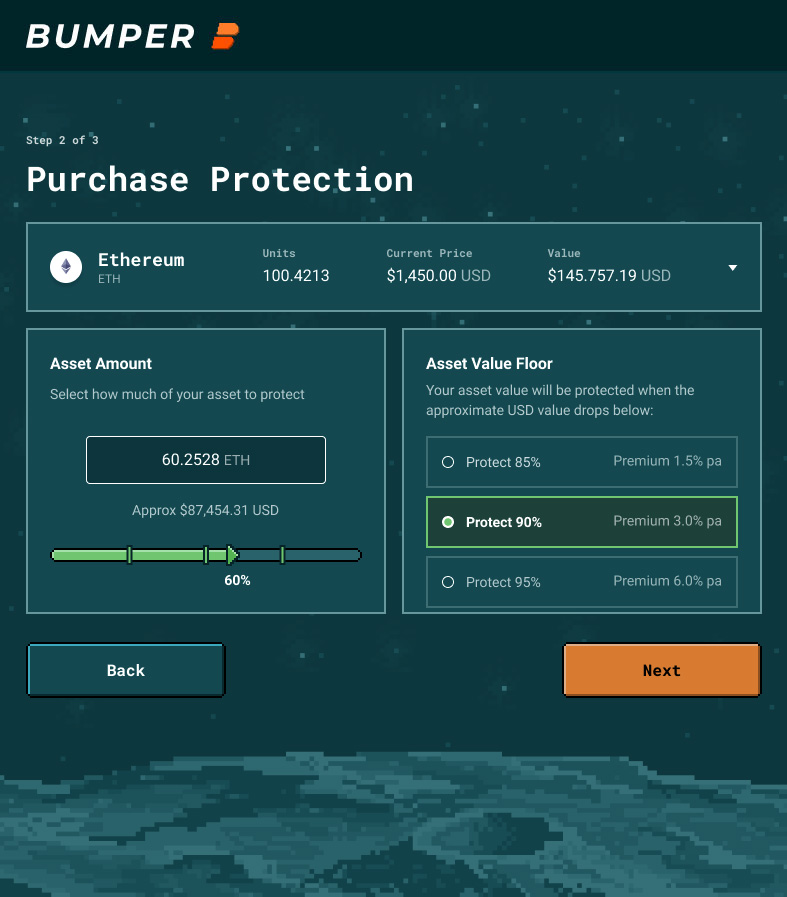 Purchase Crypto Protection with Bumper