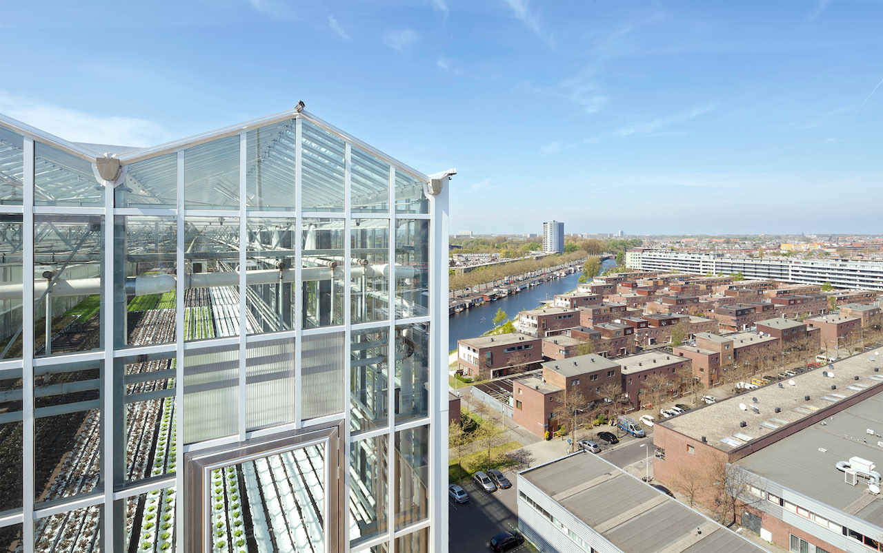 We transformed the roof and sixth floor of De Schilde, a former Philips factory in The Hague, into one of Europe's largest urban farms. The Swiss company UrbanFarmers (out of business since 2018) commissioned us to complete the design for their second rooftop farm. The construction consists of a 1200 square meter greenhouse on the rooftop and 900 square meters for fish cultivation on the floor below. Together, the two areas create a perfect symbiotic system for the production of fish and vegetables in the city.