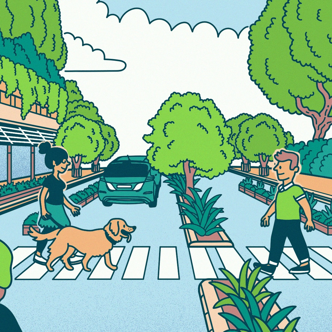 Artist impression of Adelaide as a National Park City. A woman, a man, and a dog cross the street. Street verges are full of greenery. An electric car drives away in the distance.