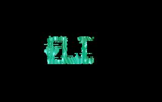 Jade Eli Technology