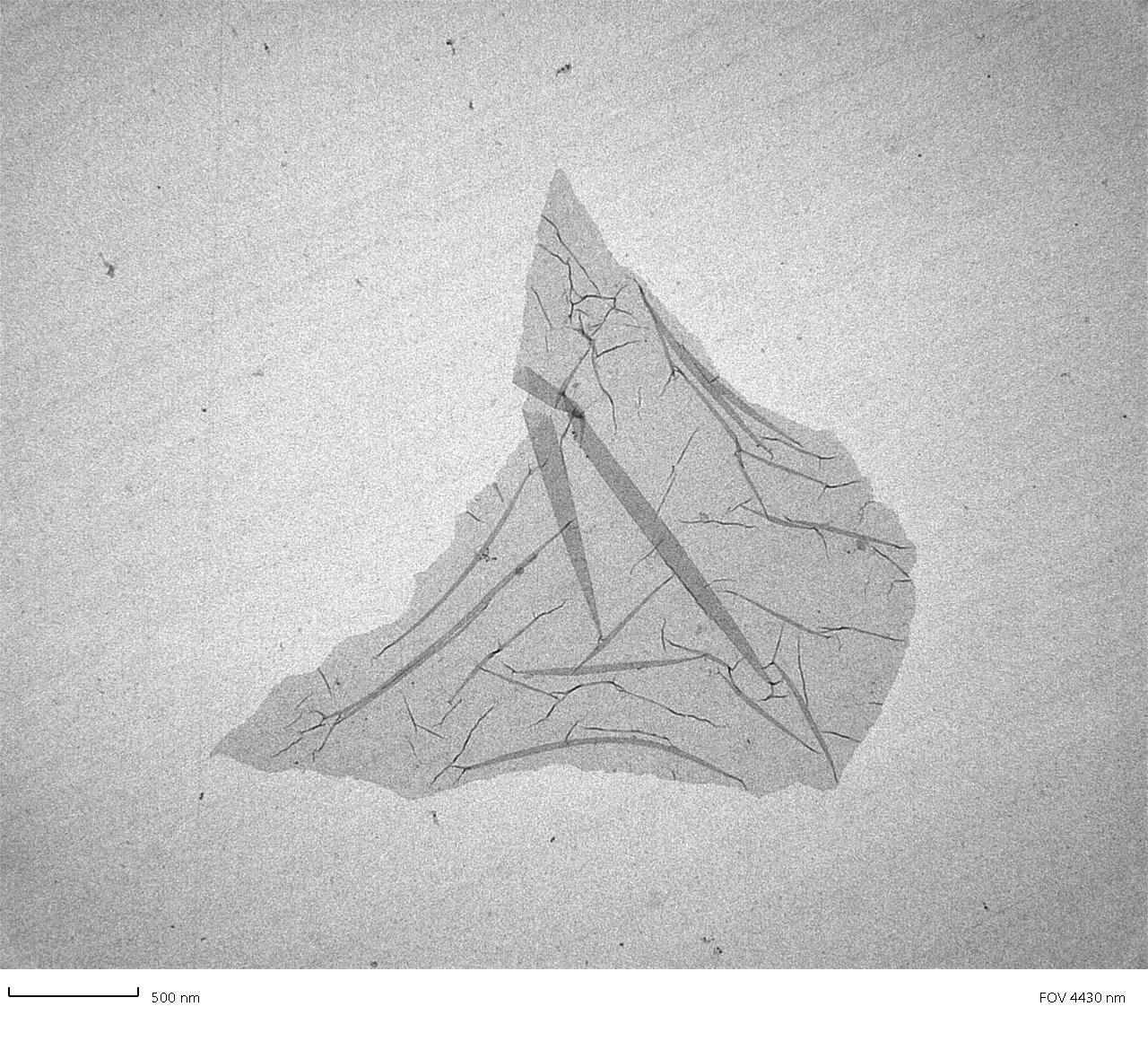 LVEM 5: graphene oxide (TEM, 2D crystal on carbon film)