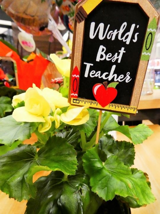 plant with world's best teacher sign