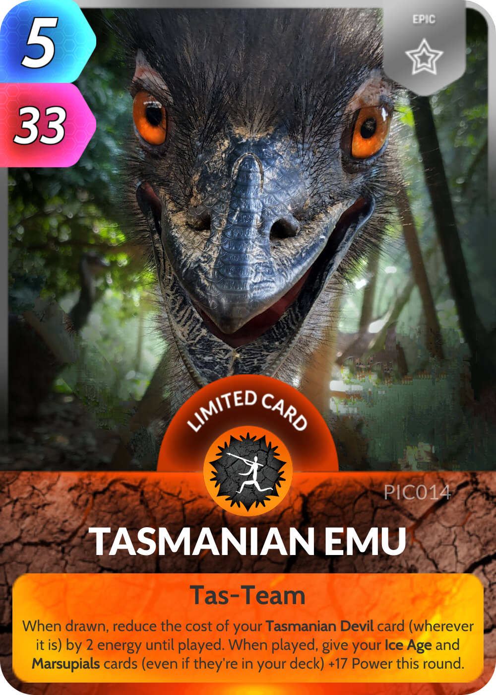 Tasmanian Emu