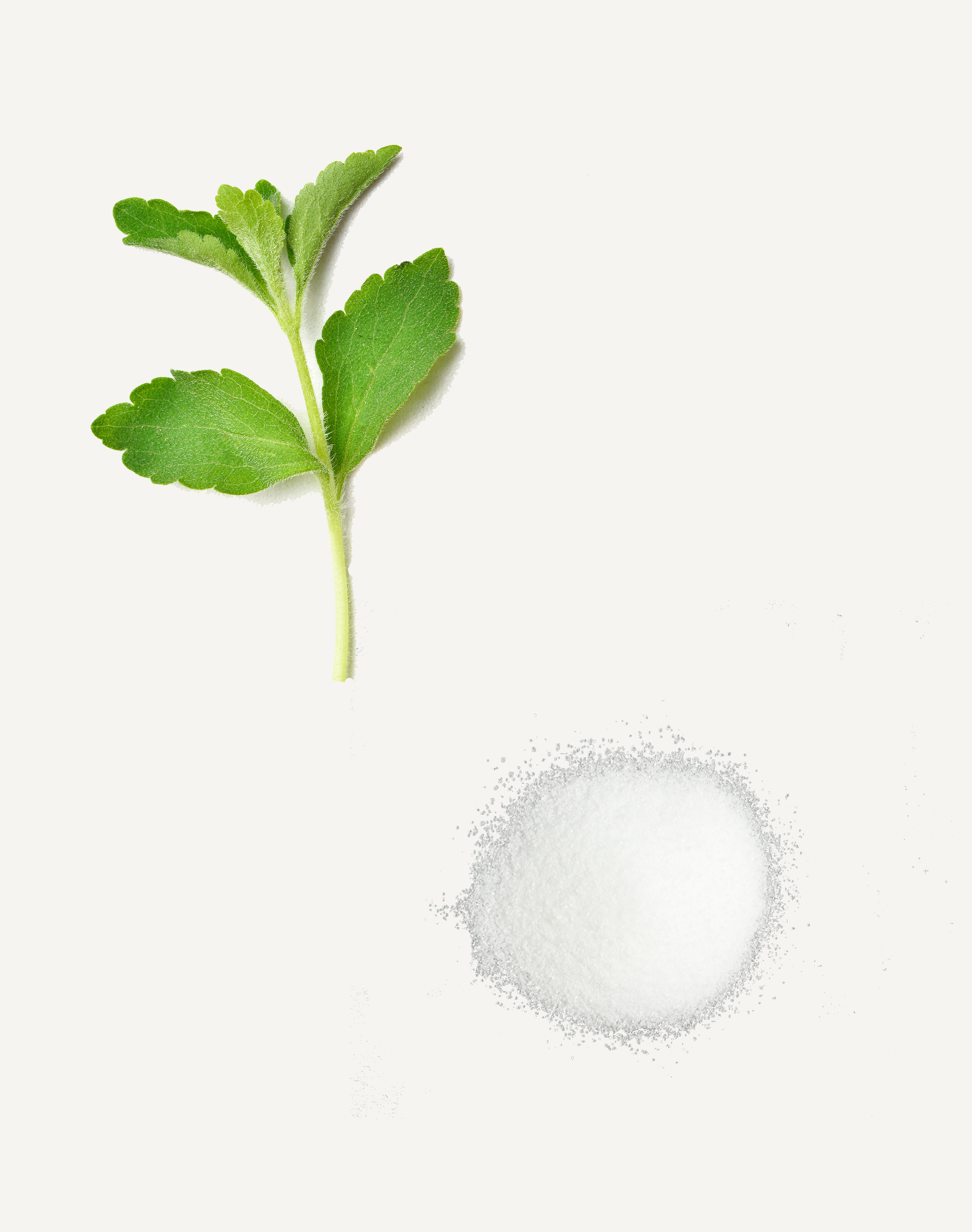 Fuelled Protein Bar Ingredient Stevia