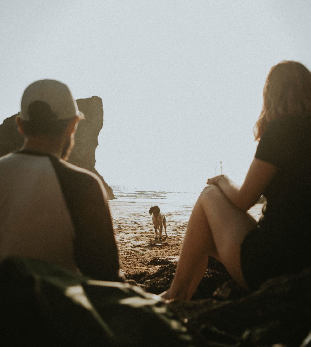 Couple sitting on the beach watching their dog