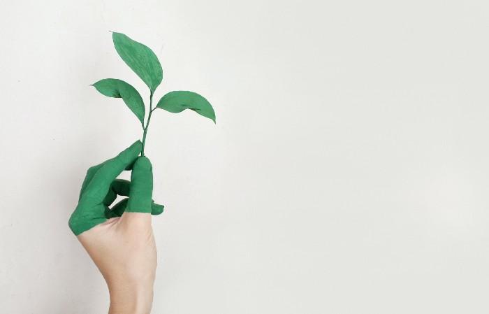 Comment l'affichage environnemental augmente la confiance des consommateurs ?