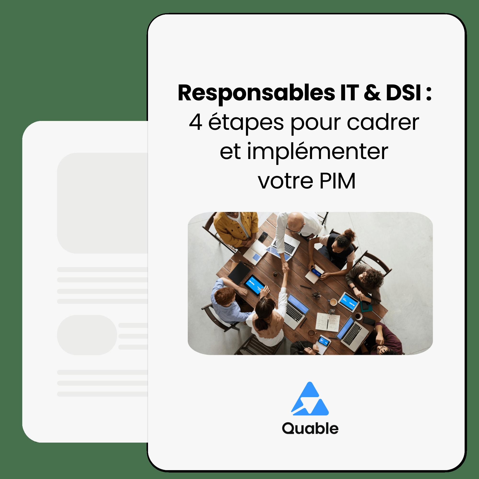 Responsables IT et DSI : 4 étapes pour cadrer et implémenter votre PIM