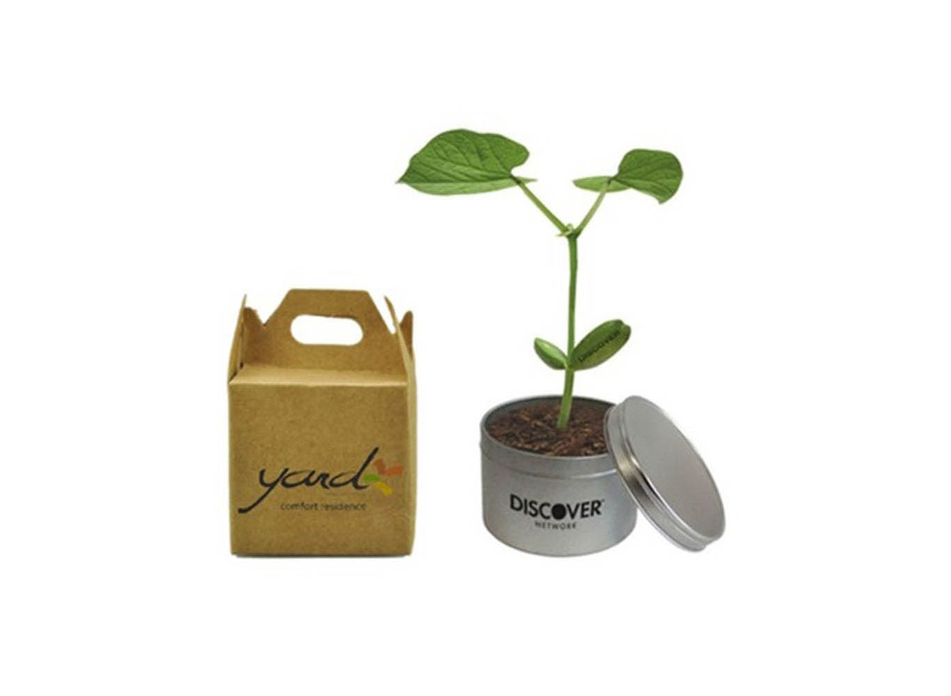 Plant in Custom Tin Can w/ Eco Packaging