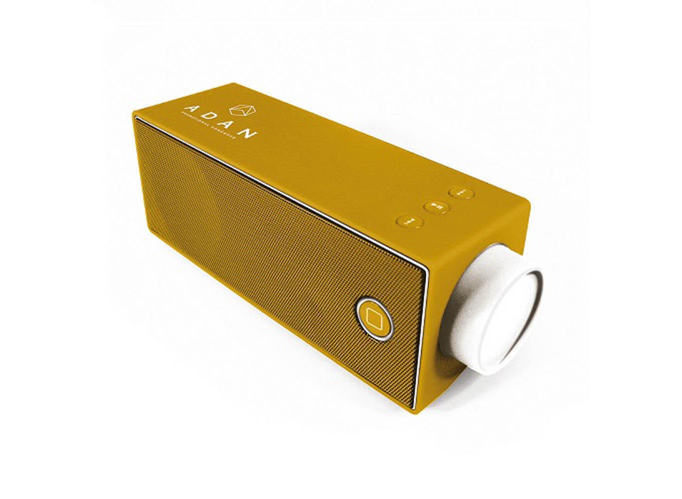 Customized Biodegradable Bluetooth Radio Speaker