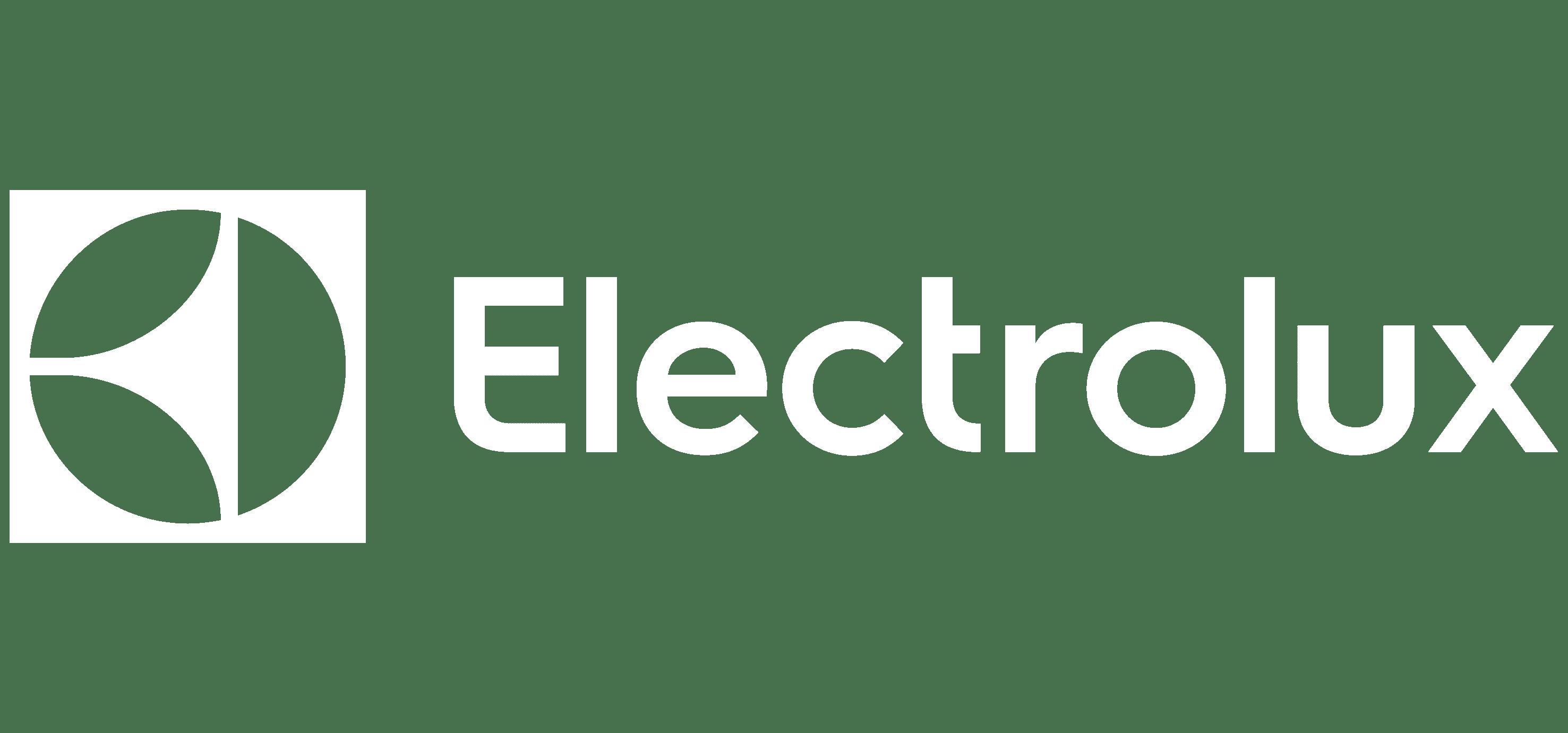 Formation programmatique - Electrolux