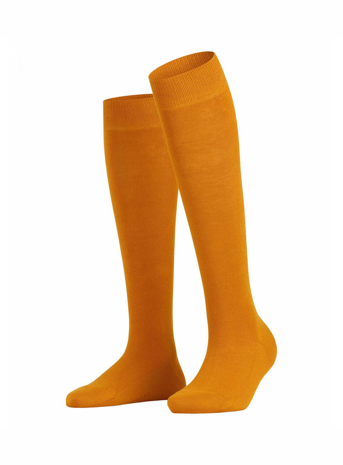 Orange family women knee-high socks
