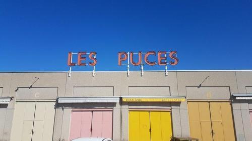 les puces du canal de Lyon
