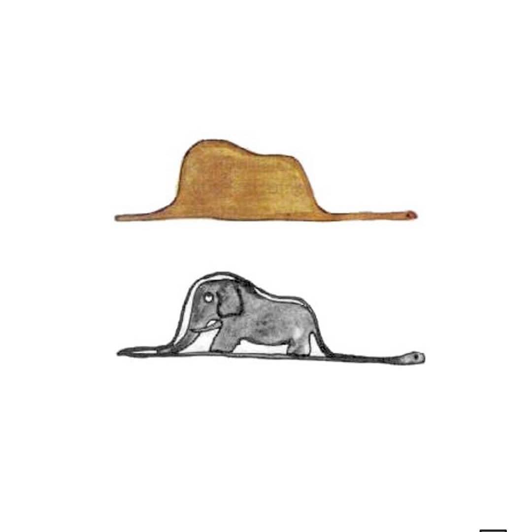 dessine moi un éléphant