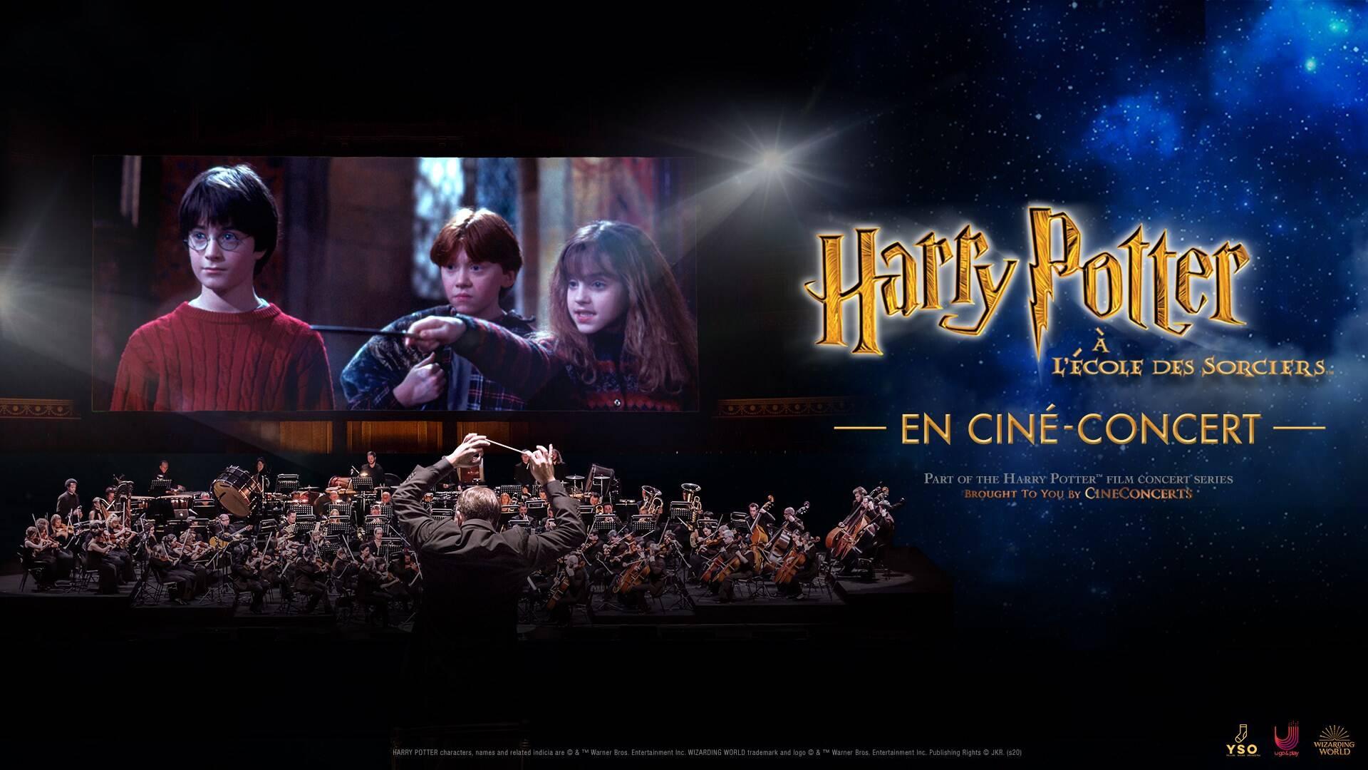 Revivez la magie d'Harry Potter lors d'un ciné concert à Lyon en décembre prochain