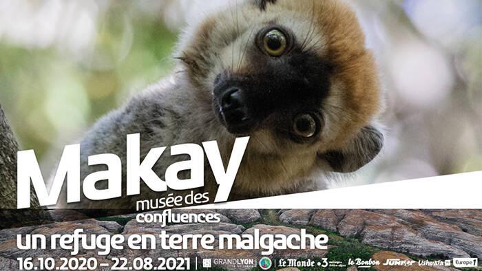Makay, la nouvelle exposition au Musée des Confluences !