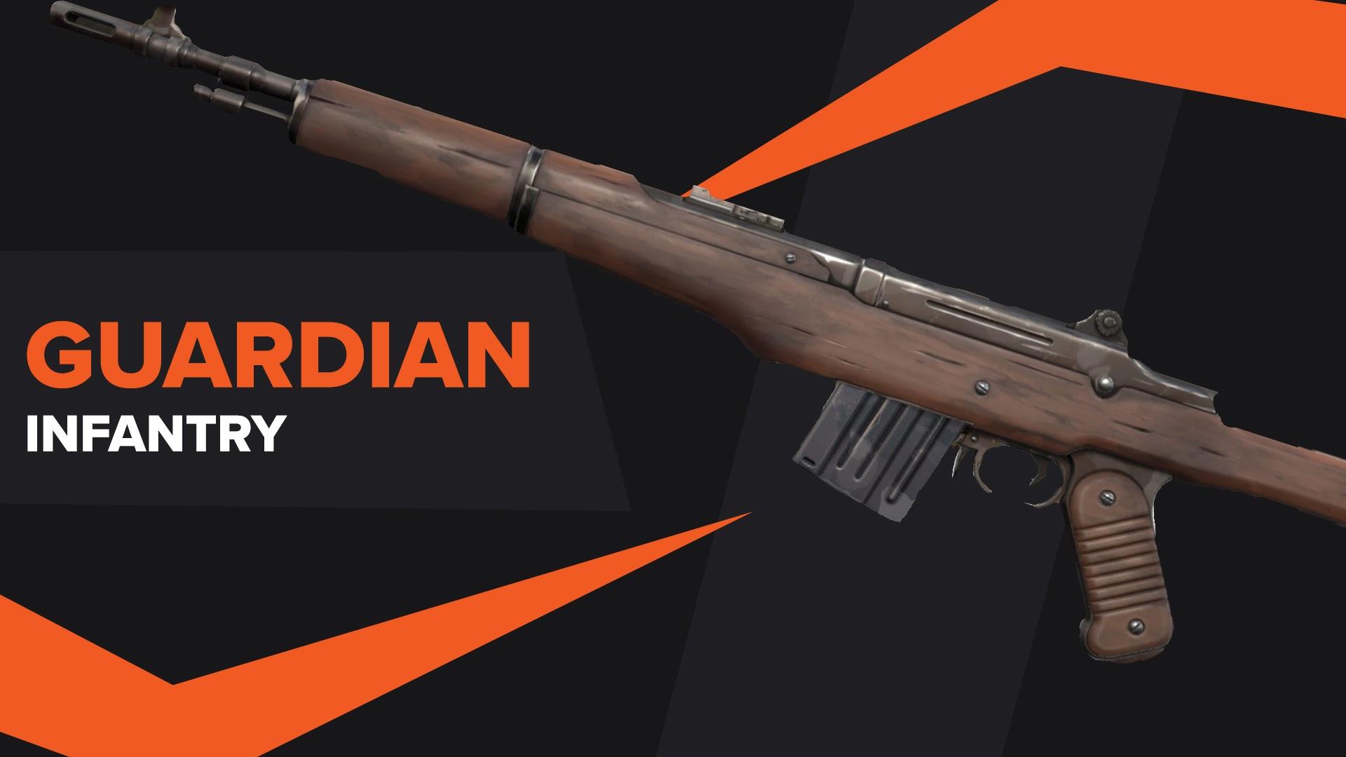 Guardian Infantry Skin