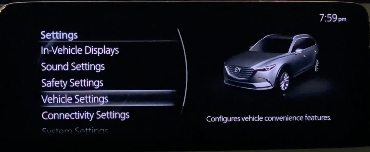 Vehicle settings selected with an illustration of a car next to it