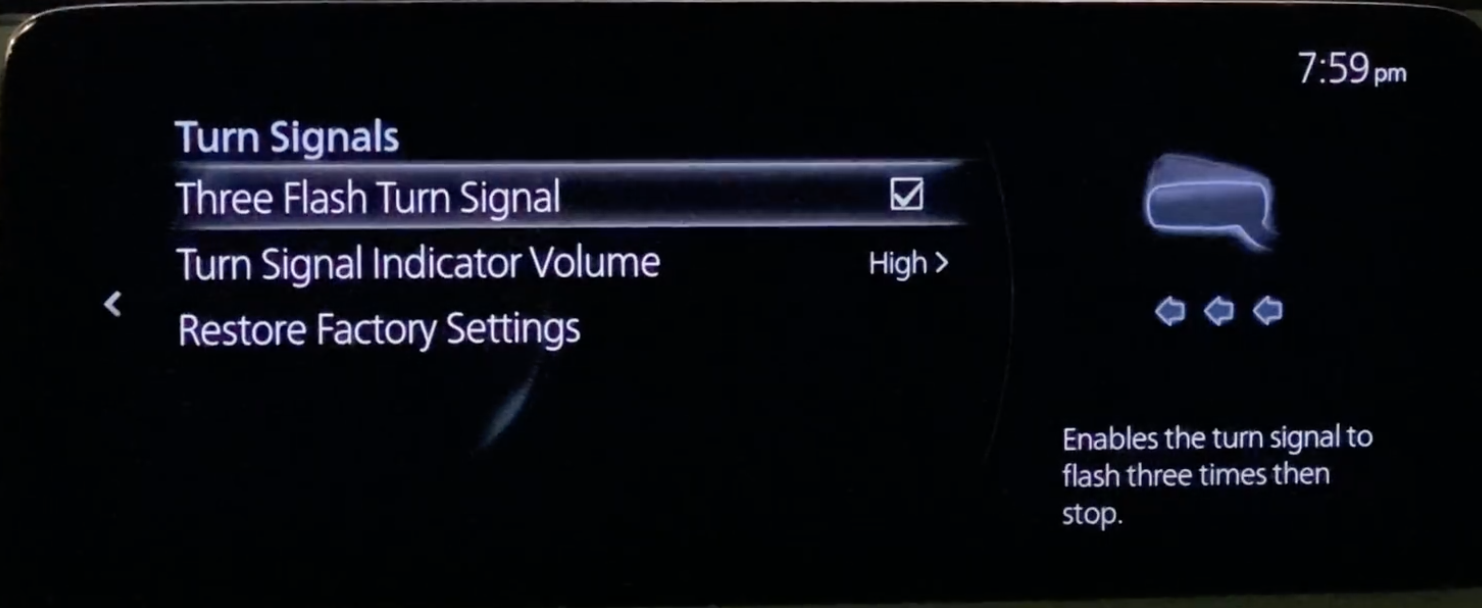 Turn signal settings such as flashing and volume