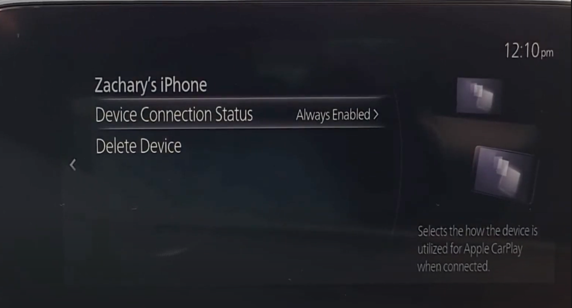 Device manager where a user can see device connection status or delete a device