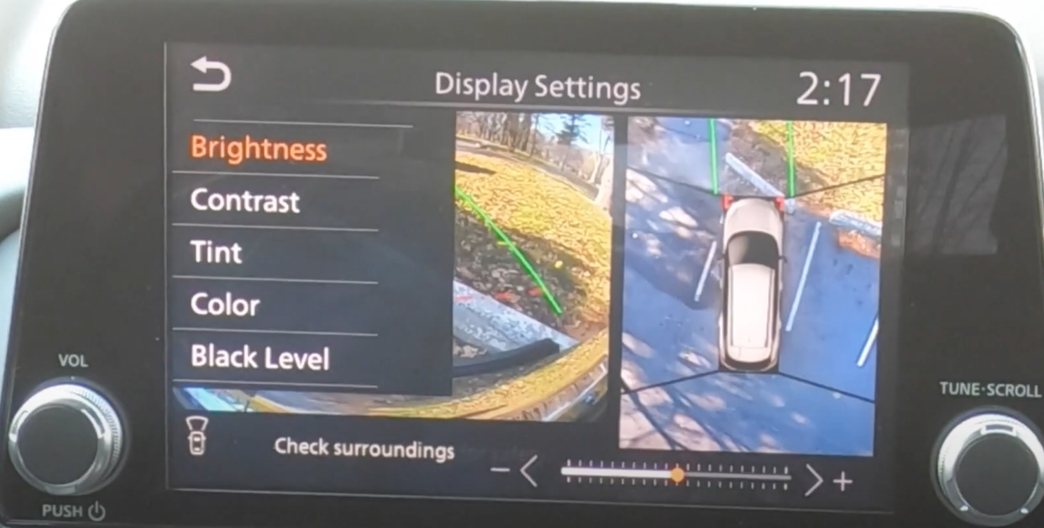 Display settings for the camera views such as brightness, contrast and tint on top opf the rearview camera view