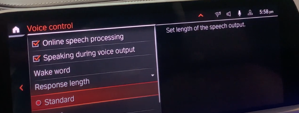 Various voice assistant settings