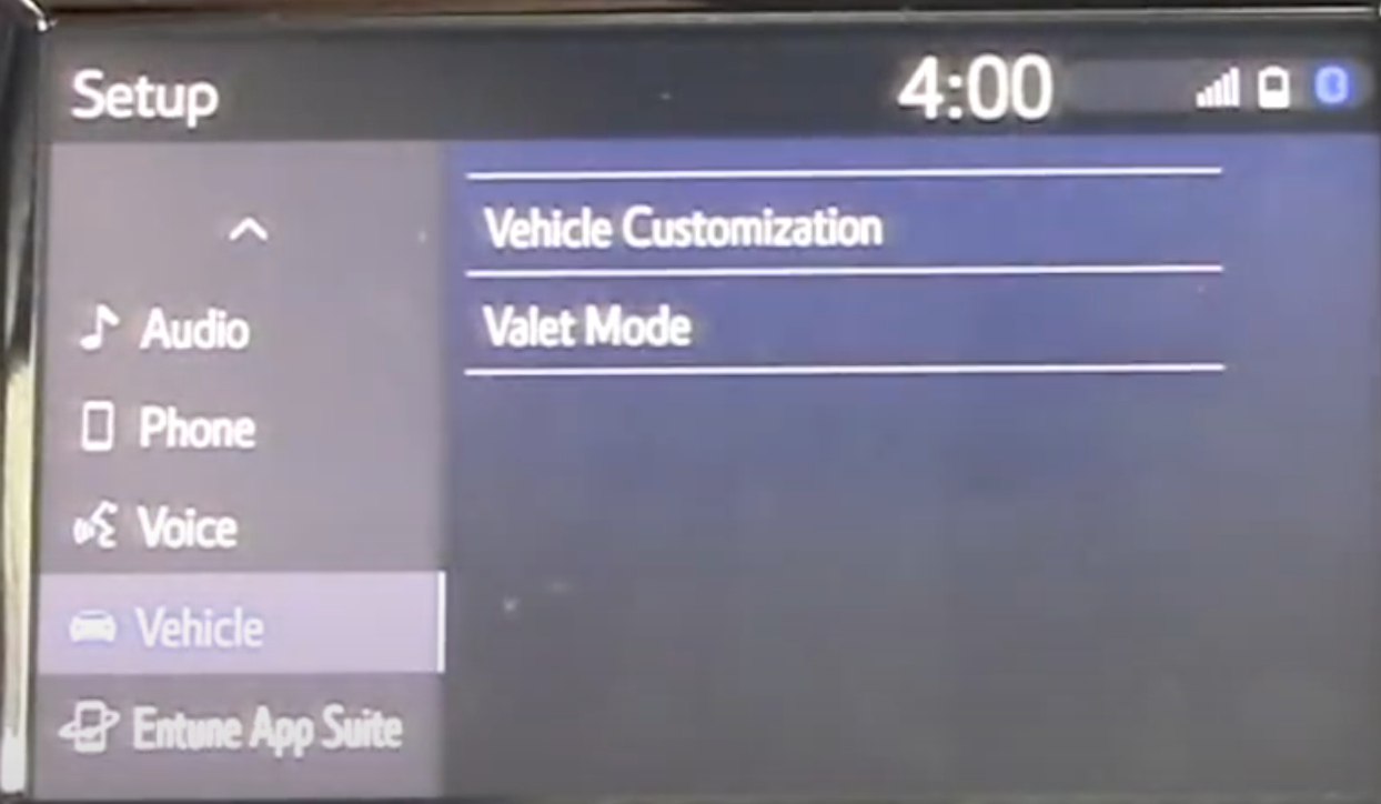 Option to choose valet mode to ensure the privacy of the infotainment settings