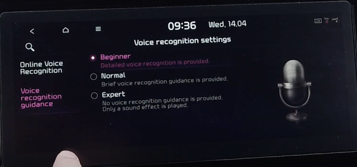 Settings to arrange the level of voice assistant to be either beginner, normal or expert with an illustration of a microphone on the side