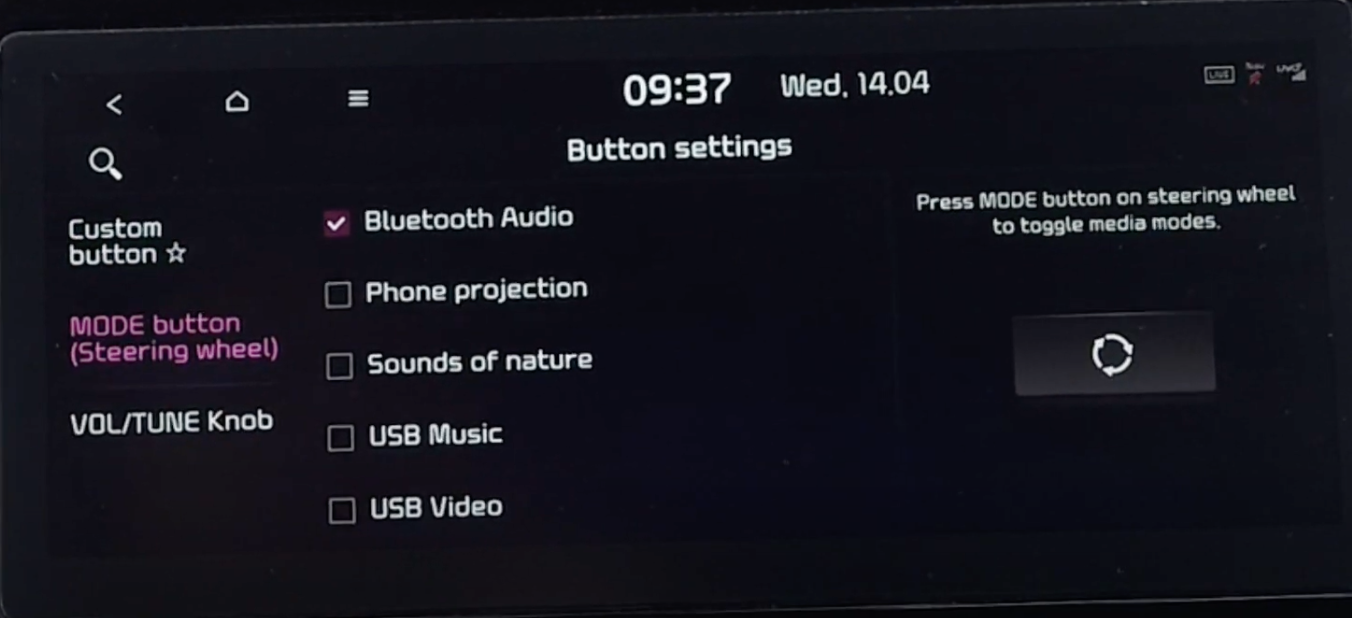 Assigning certain commands to steering wheel buttons