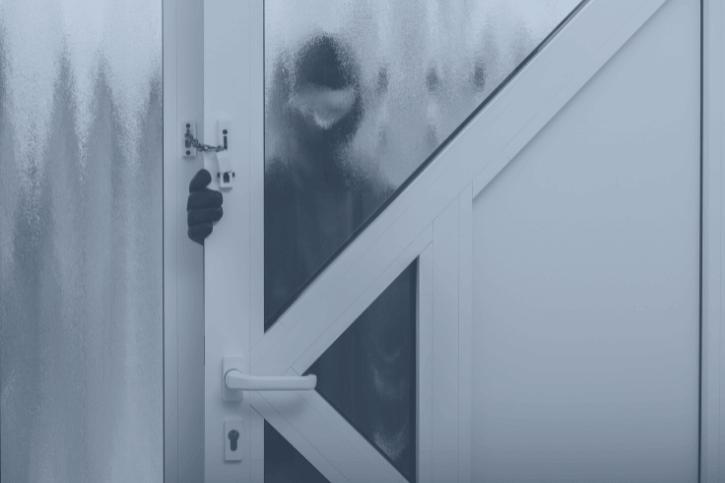 The Sneaky Burglar