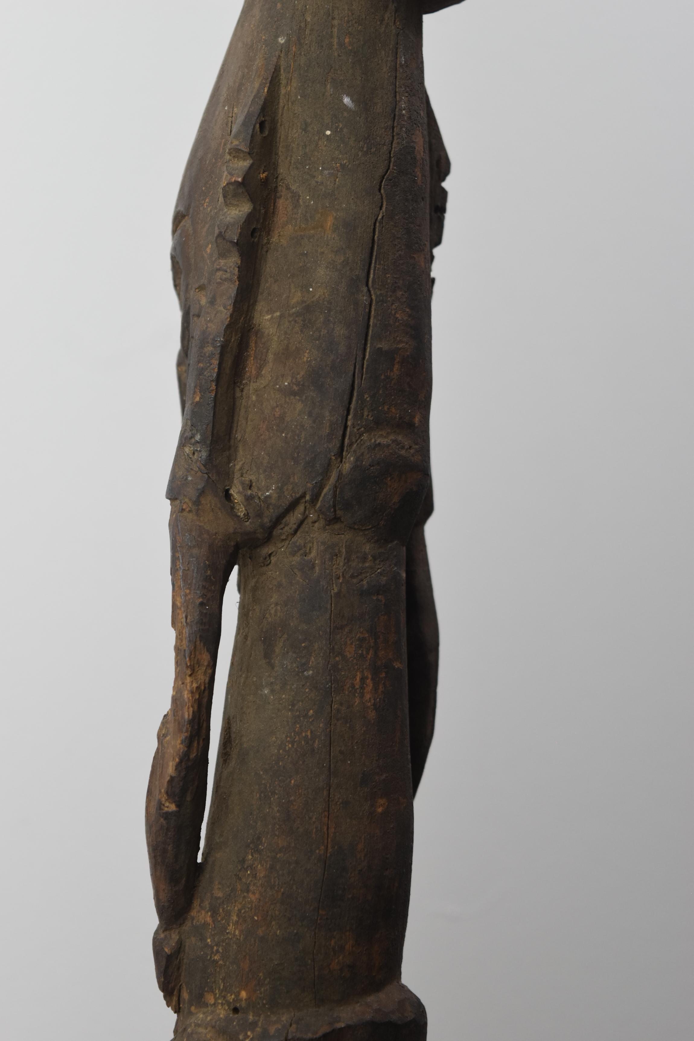 Sepik-Ramu Estuary Figure