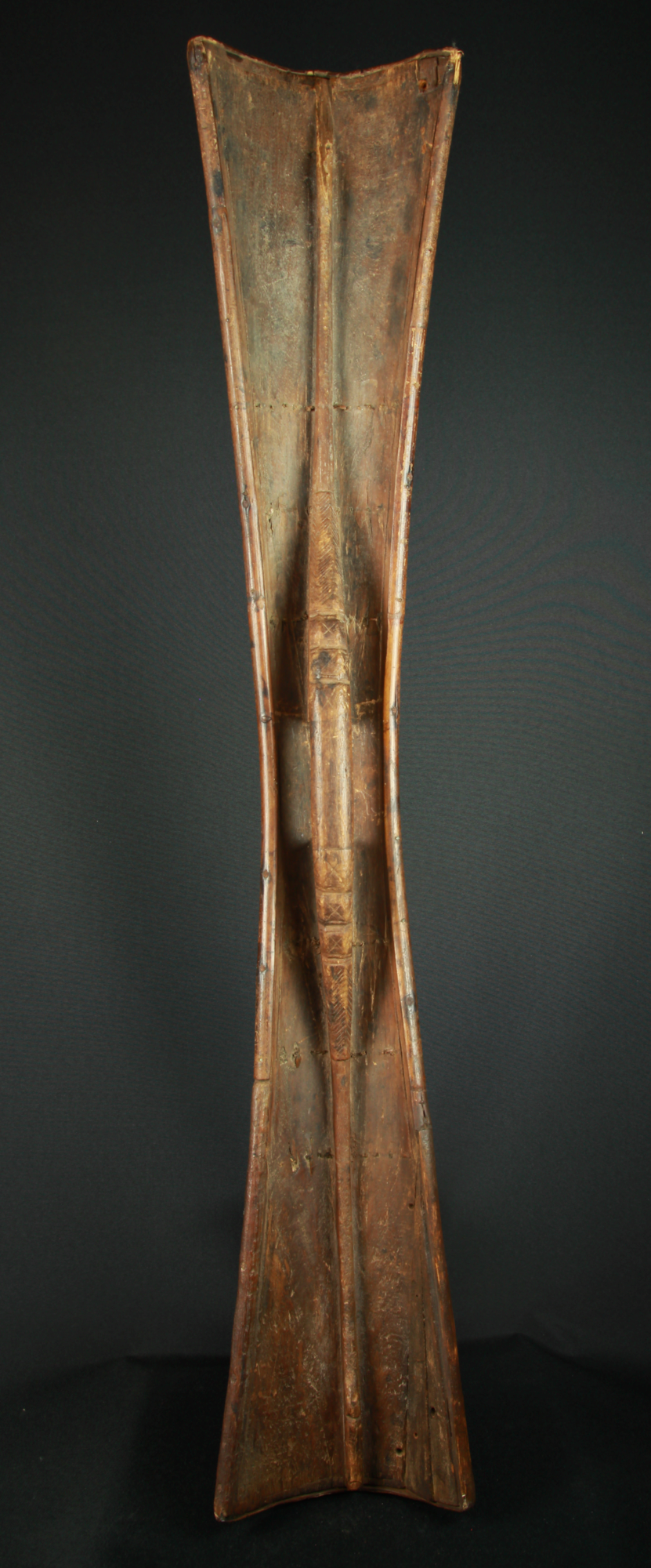 Moluccan shield