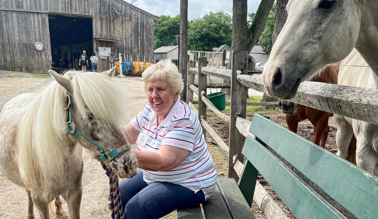 Virtually Tour A Horse Farm With GetSetUp And Pal-O-Mine