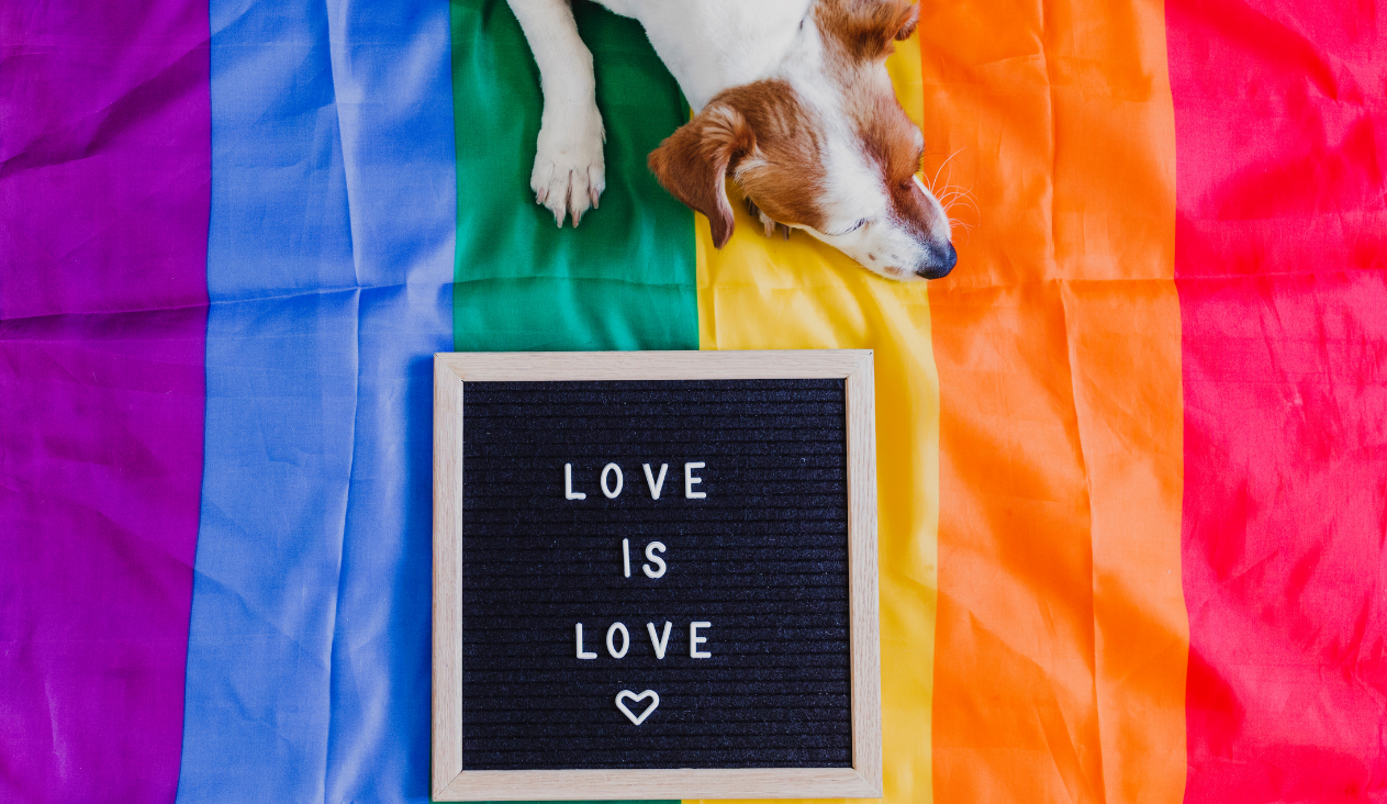 Love is Love With Pride