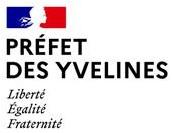 Logo DDETS 78 Yvelynes
